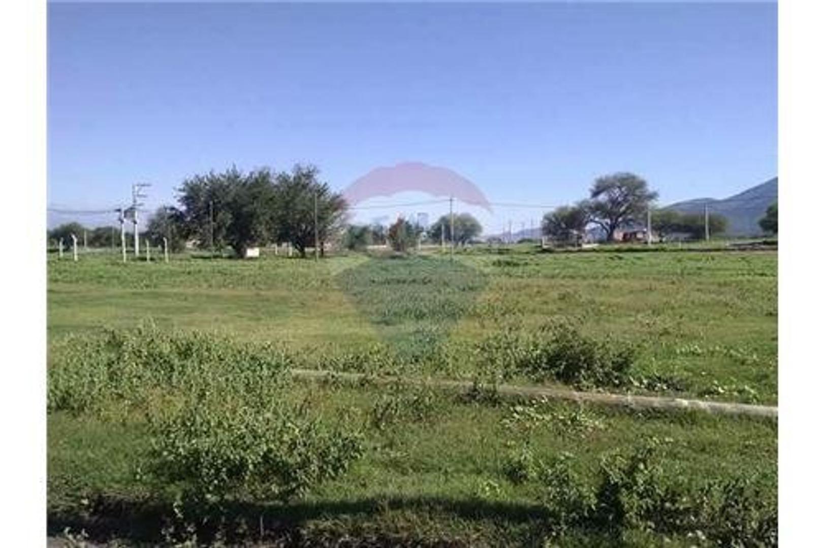 Terreno en Los Algarrobos (La Isla, Cerrillos)