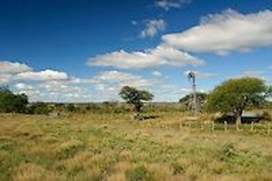 VENDO CAMPO en La Pampa para 1000 vacas a pagar hasta 10 años. Consultas al 02954-15523985