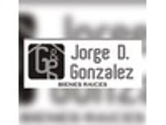 JORGE D. GONZALEZ BIENES RAICES