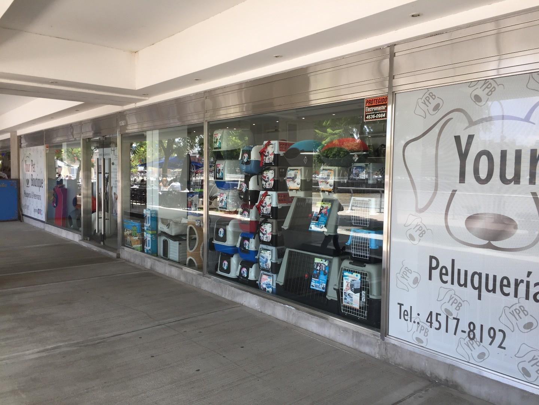 Pierina Dealessi 1300 - Puerto Madero - Capital Federal