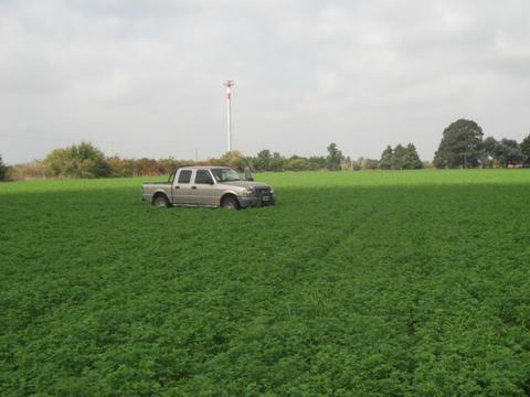 Se vende campo 10Ha - zona rural - apto agricultura - U$S 9/m2
