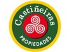 CASTIÑEIRAS PROPIEDADES