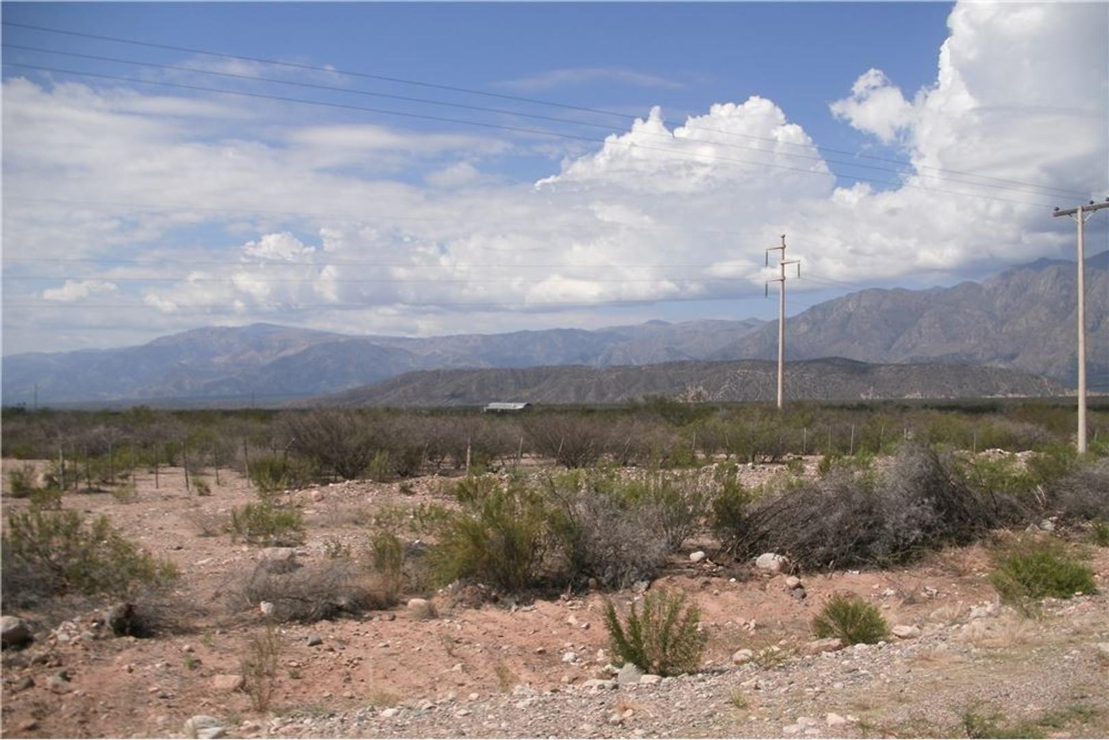Campo en Venta en Vichigasta, La rioja