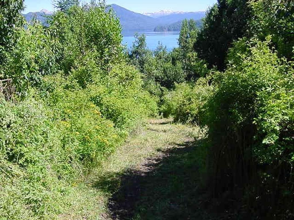 Fracción 1 Ha con vista al lago , Villa la Angostura
