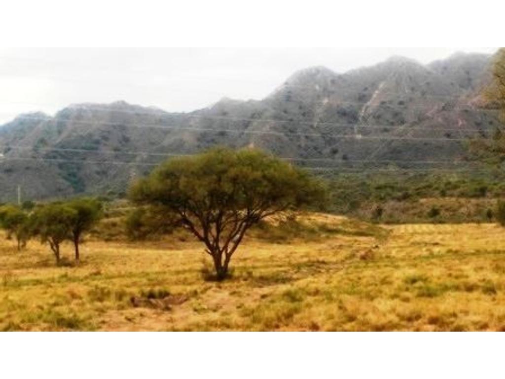 Excelente 5 hectareas en la Ciudad de San Luis sobre Autopista .25 de Mayo
