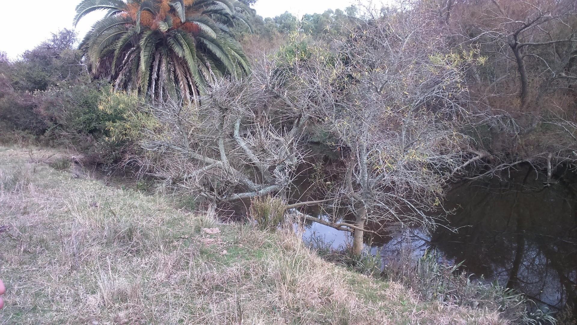 Magdalena, Atalaya, 2 1/2 hectareas