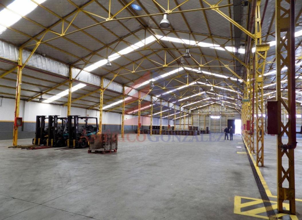 XINTEL(AME-AME-772) Galpón - Venta - Argentina, Capital Federal - TILCARA 2750