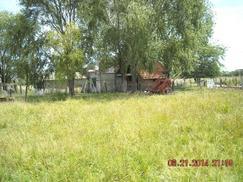 Campo en Alquiler
