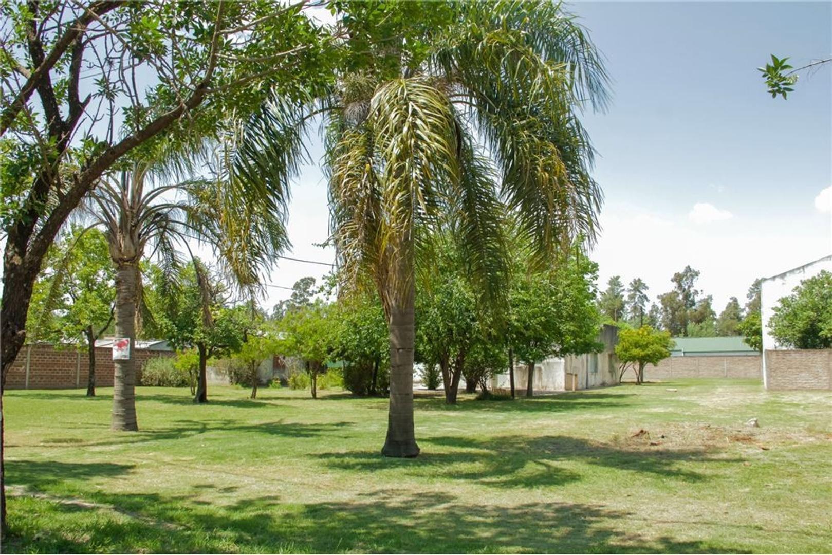 SE VENDE casa con gran terreno en AVELLANEDA!