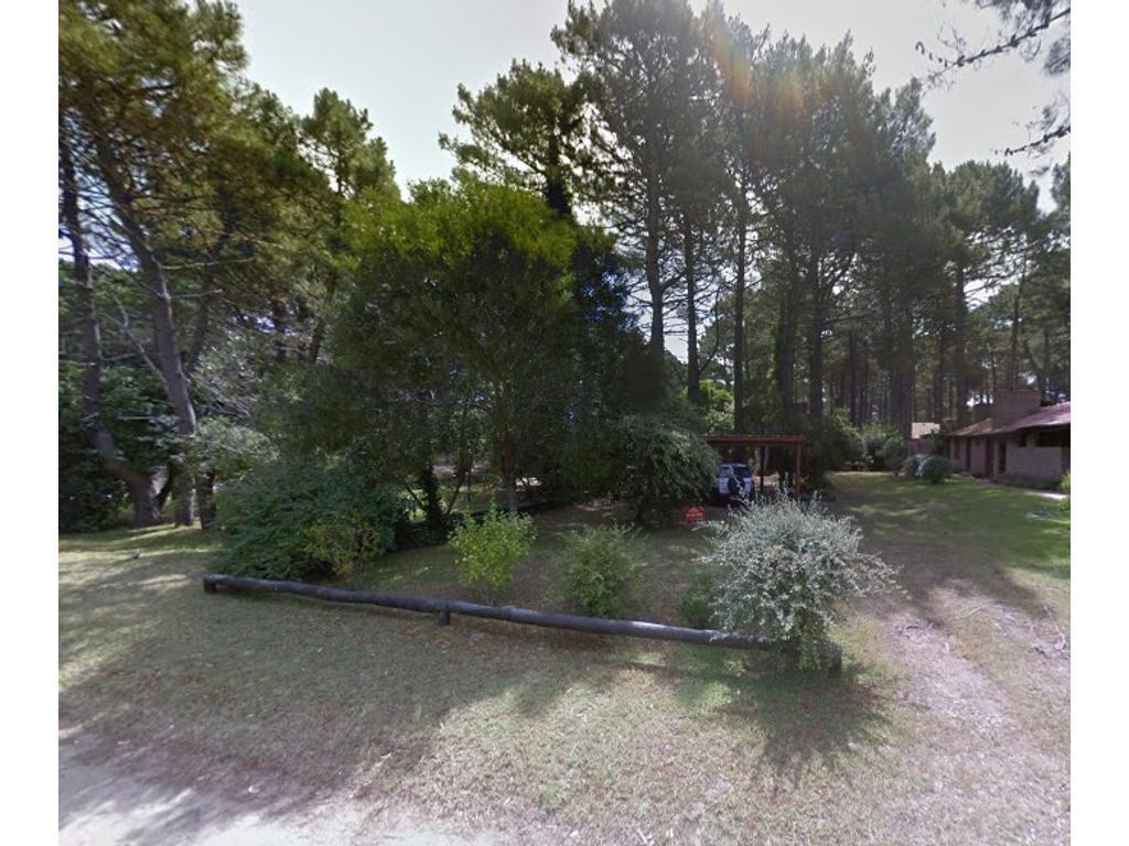 Terreno en maravilloso barrio boscoso con vecinos