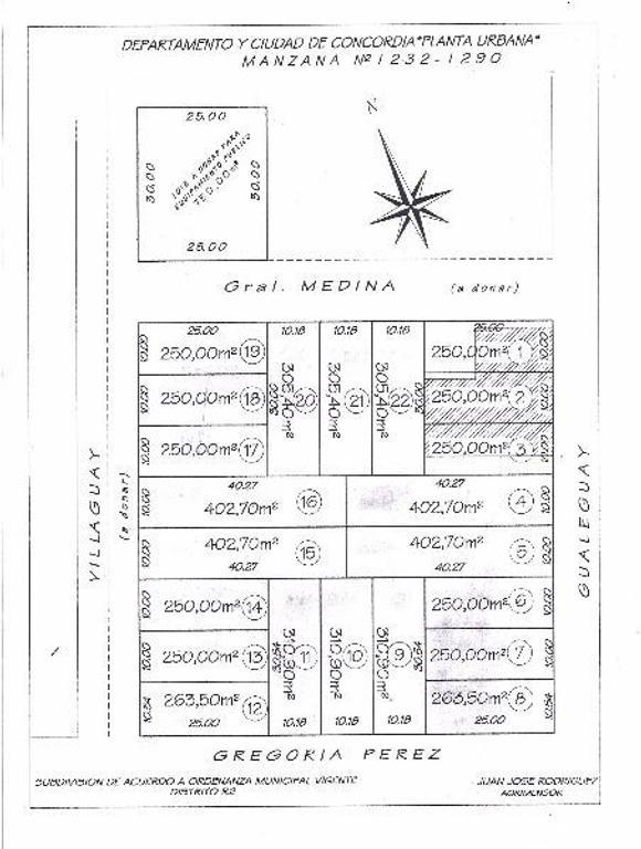Loteo excepcional sobre pavimento, a 100 m. de Av. Illia. Zona Vitacrem.