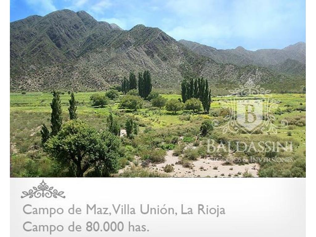 Campo de 80000 has en Villa Unión - La Rioja