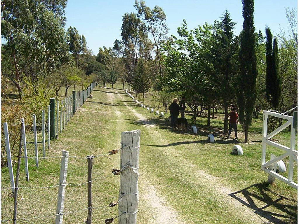 ÚNICA OPORTUNIDAD EN EL VALLE DE PUNILLA EXCELENTES CHACRAS (REF 20801)