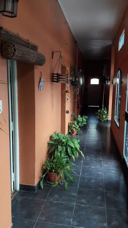CASA 3 AMBIENTES - APTO CRÉDITO - MUY BUENO SOBRE LOTE 10m X 35m EN HAEDO NORTE - EL PALOMAR