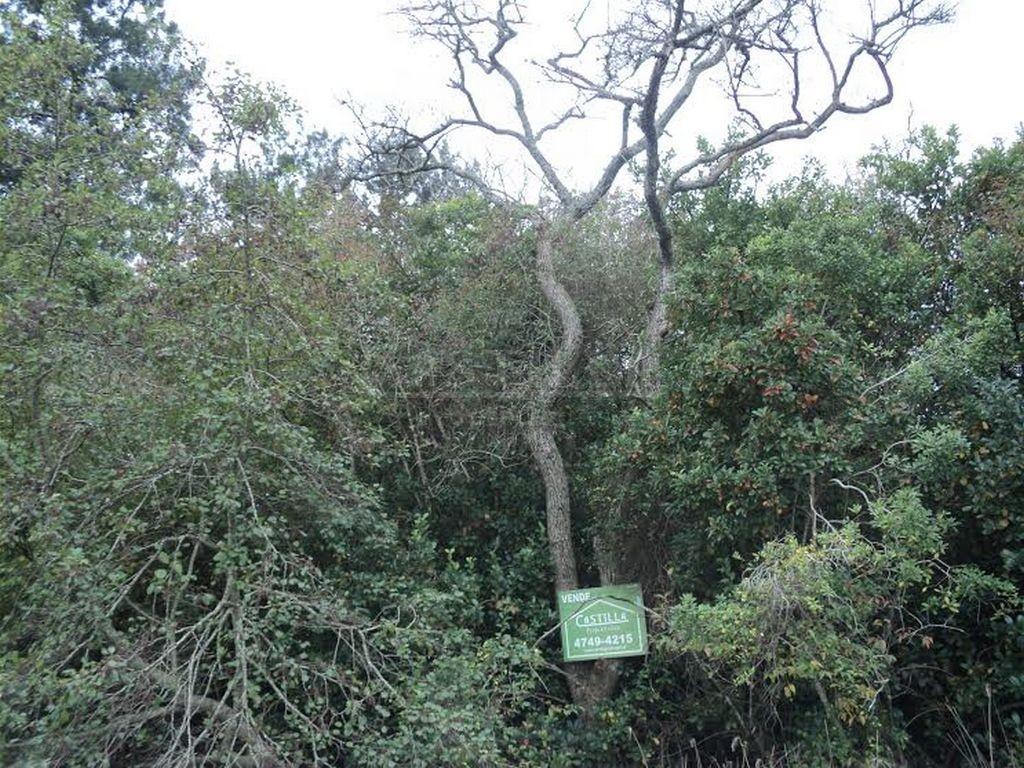 Venta de Lote sobre Arroyo Sabalos