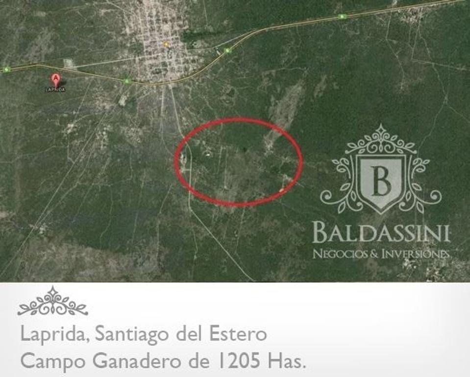 CAMPO DE 1205 HAS EN LAPRIDA - SANTIAGO DEL ESTERO - DEPTO. DE CHOYA -  BUEN AGUA - ESCRITURADO
