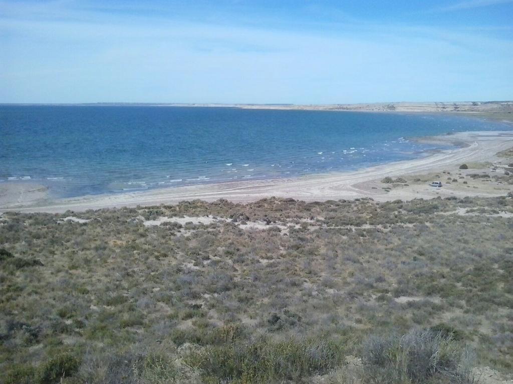 Campo con costa de mar en el Golfo San José