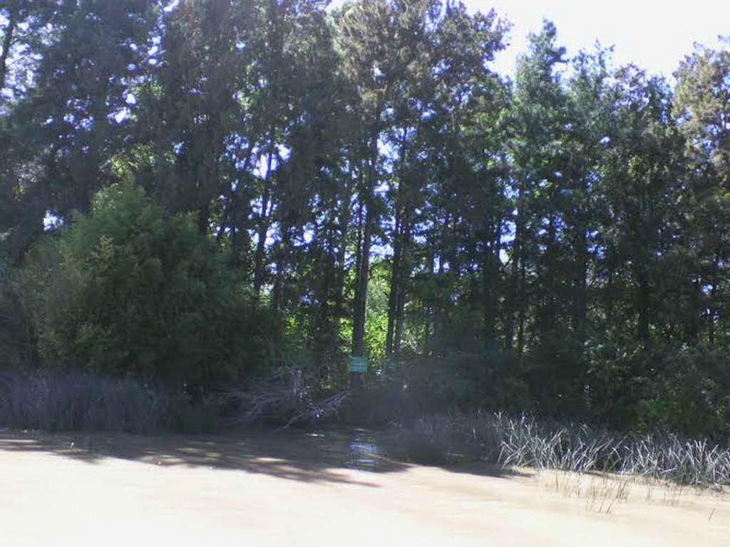 Venta de Lote sobre Río Lujan en el Delta de Tigre