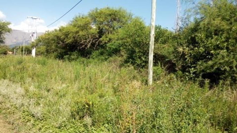 A solo cuadras de la Ruta N°1, en Merlo San Luis
