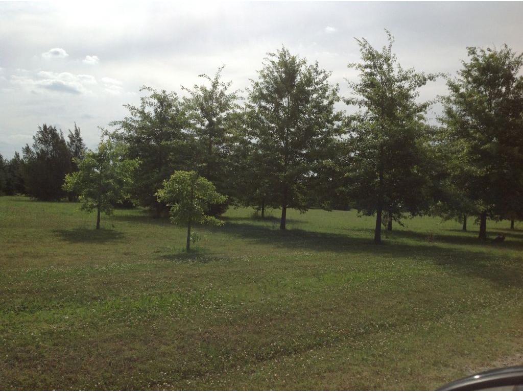 Terreno Emp. Rural  en Venta ubicado en Chacras de General Rodriguez, Zona Oes - OES0413_LP156325_1