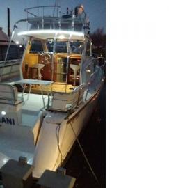 Crucero Andamar Ortholand Oportunidad