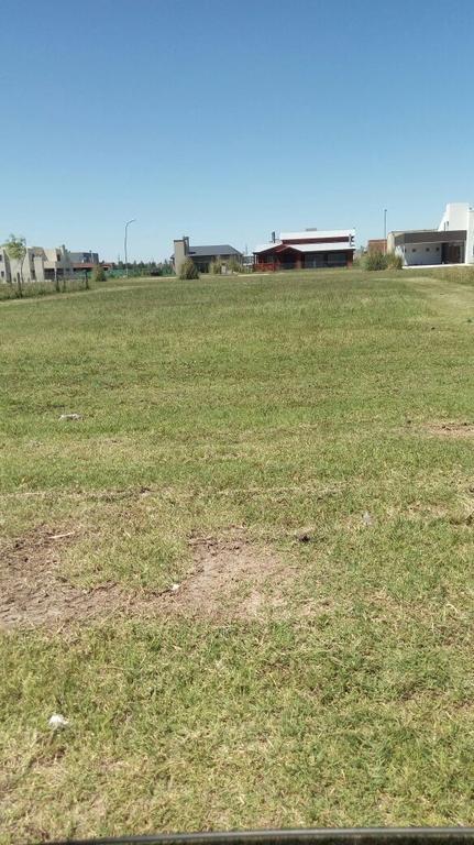 Proyecto de casa de 340 metros cuadrados en Terreno de 800 metros.