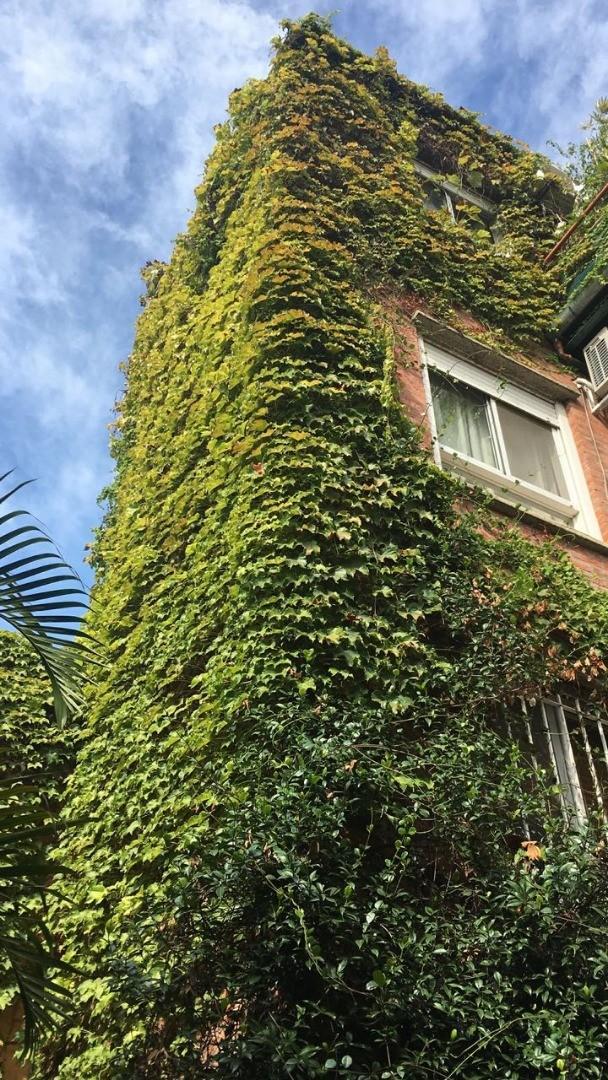 Vendo departamento tipo casa, 3 ambientes, jardín, cochera, patio y baulera. - Foto 19