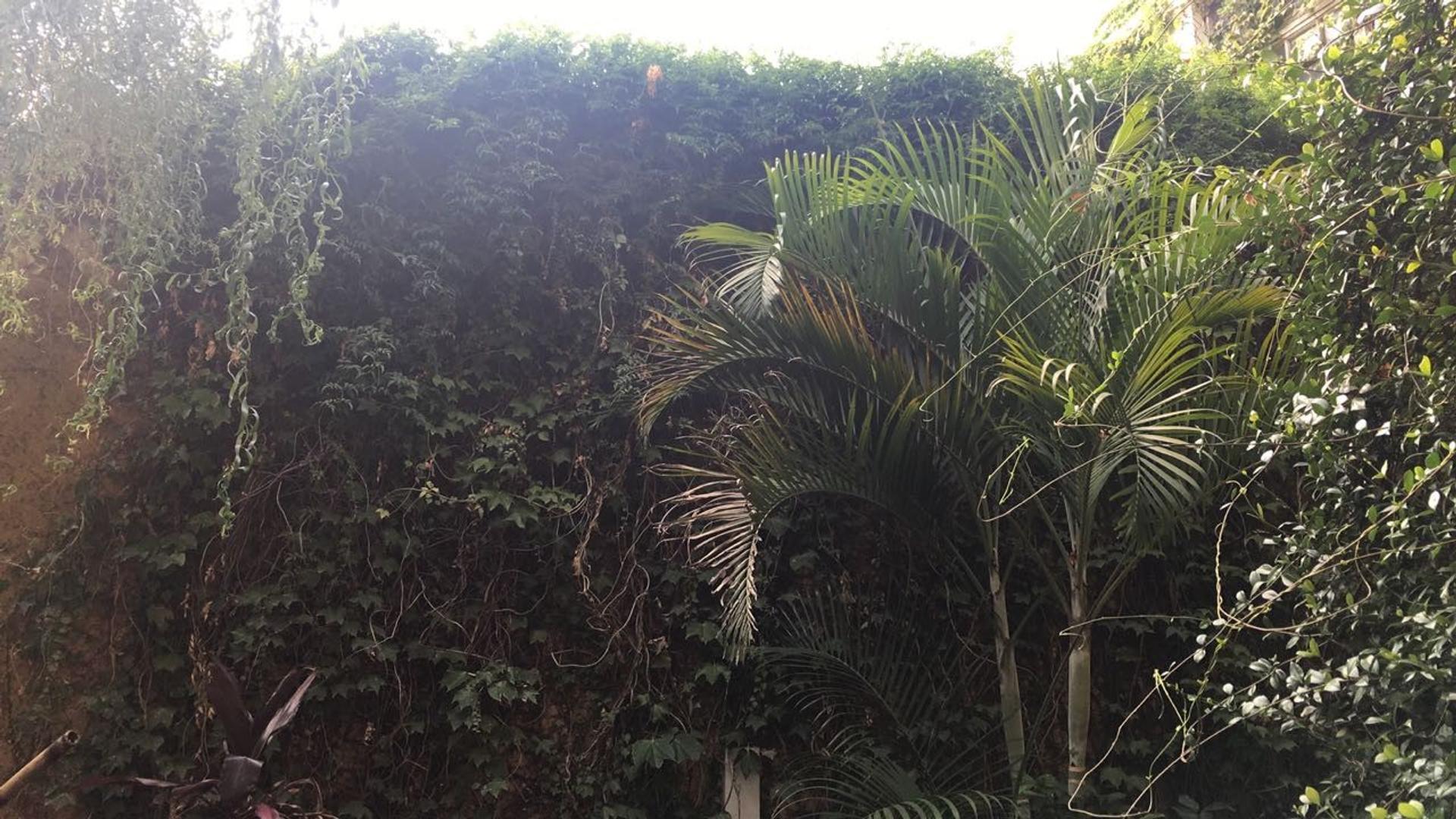 Vendo departamento tipo casa, 3 ambientes, jardín, cochera, patio y baulera. - Foto 17