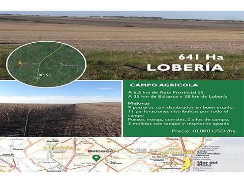 LOBERIA Campo en venta agrícola 641 ha.