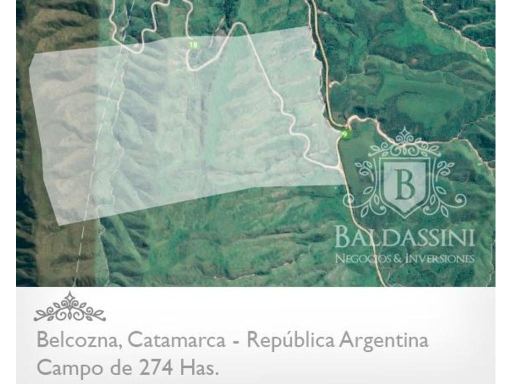 CAMPO DE 274 HAS. EN VILLA DE BALCOZNA - CATAMARCA - HERMOSA VILLA TURÍSTICA - CAMPO A DESARROLLAR