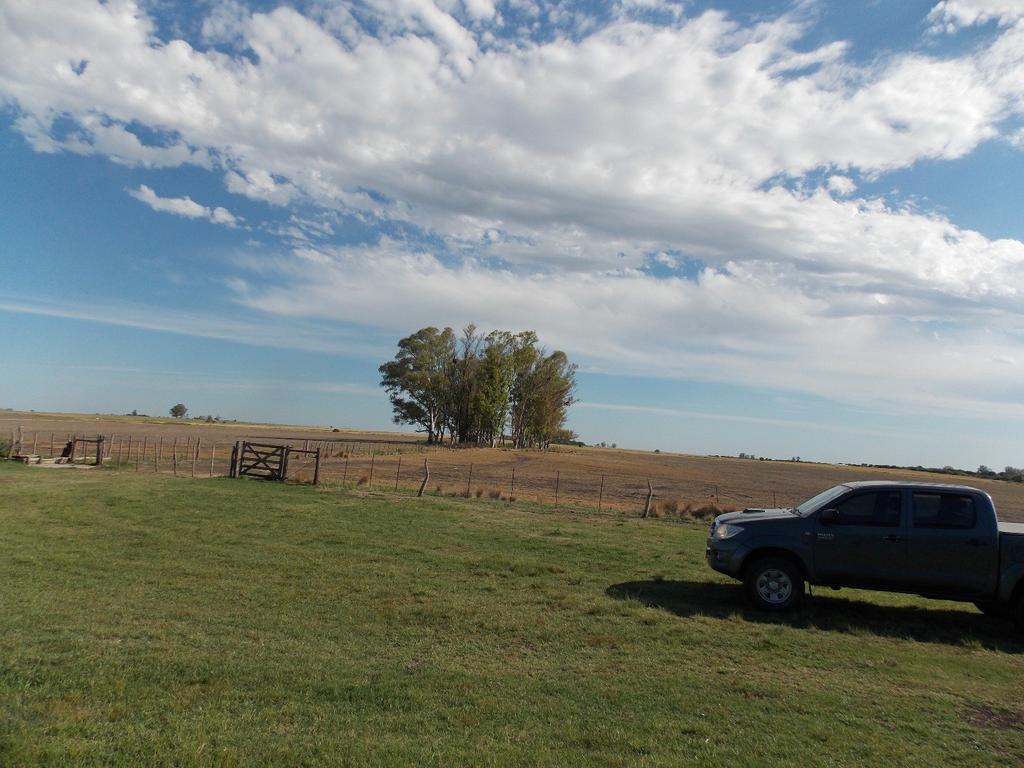 "Campo 130Ha. ""Agricultura"""