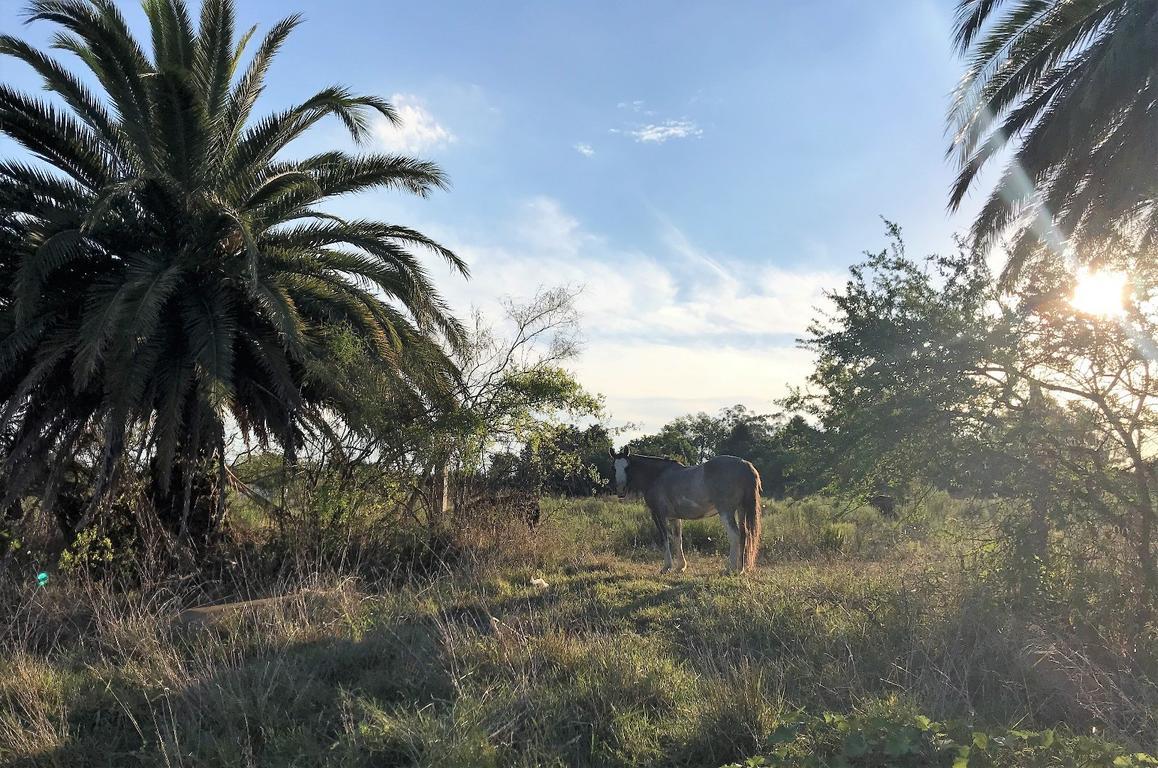 Sin comisión inmobiliaria terreno en venta, zona de quintas