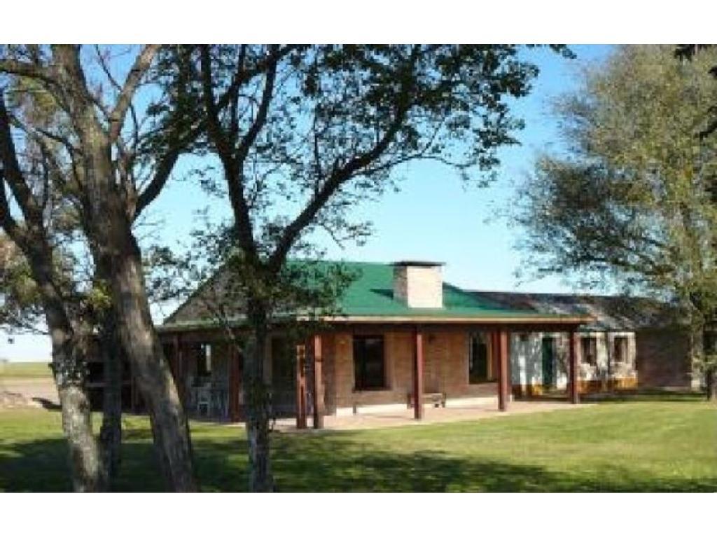 Arequito Prov. de Santa Fe, campo en venta 595 ha. U$S 10.000 /ha.