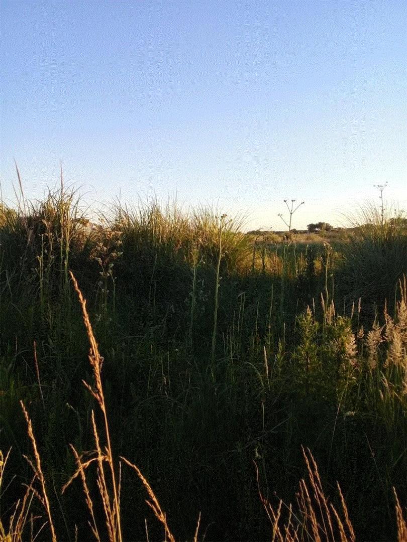 Terreno en Venta en Mar Del Tuyu