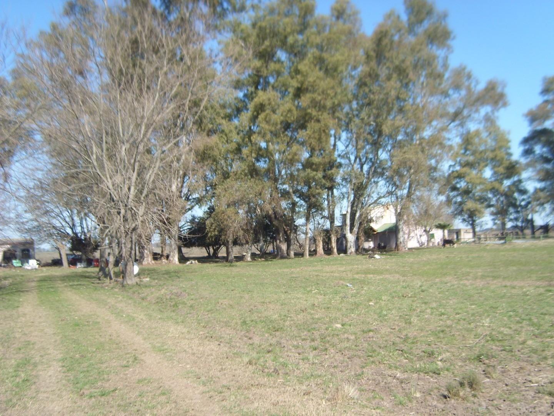 Venta campo 18 has. REBAJADO. Las Heras- Villars. Ruta 6 km 127.5