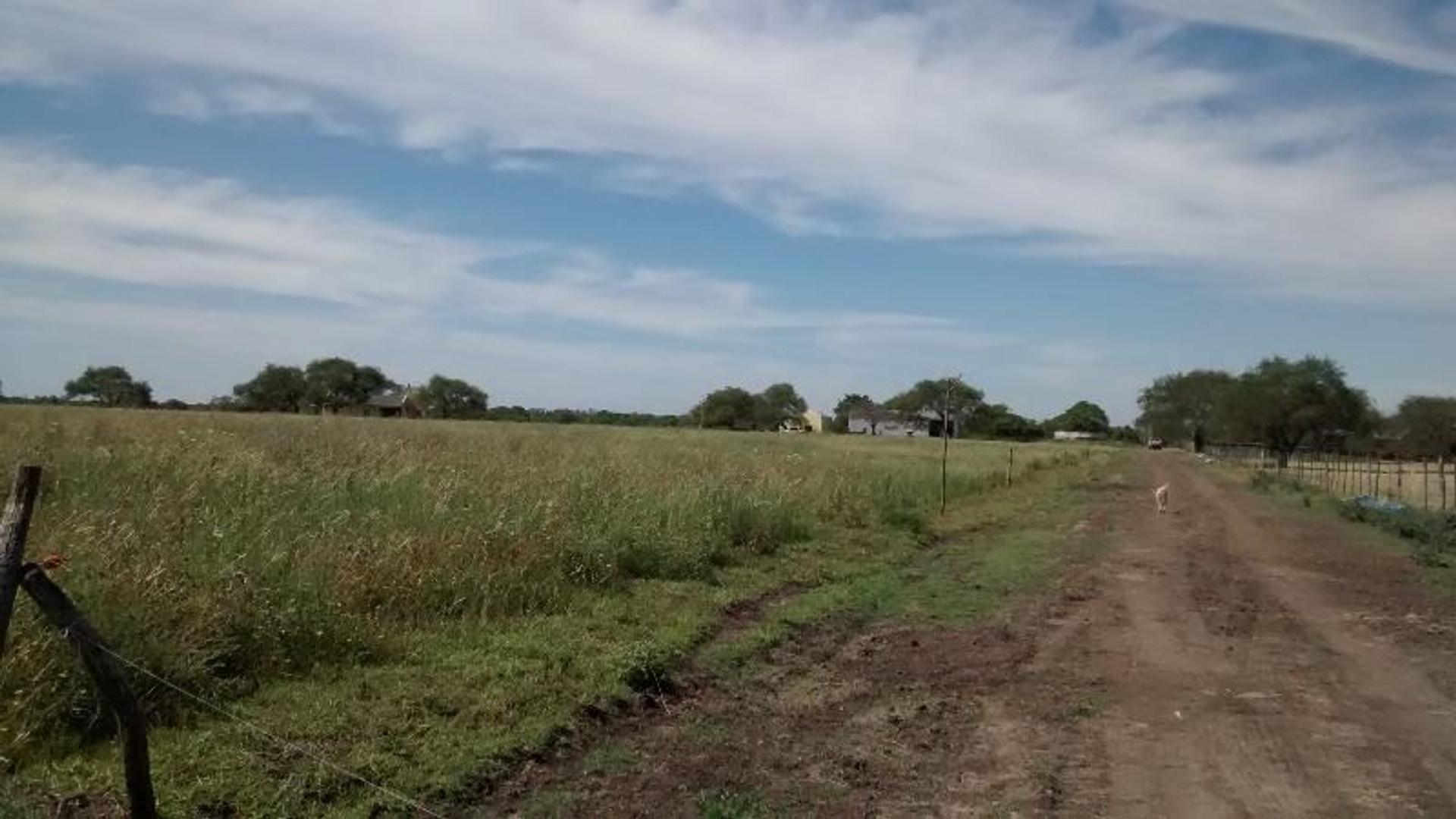 660 has excelente campo agrícola ganadero, estancia armada