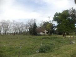 Campo en Venta