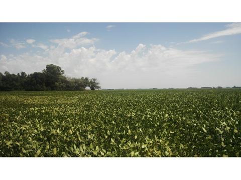 GRAN FRACCION - IDEAL AGRICULTURA - OPORTUNIDAD URGENTE