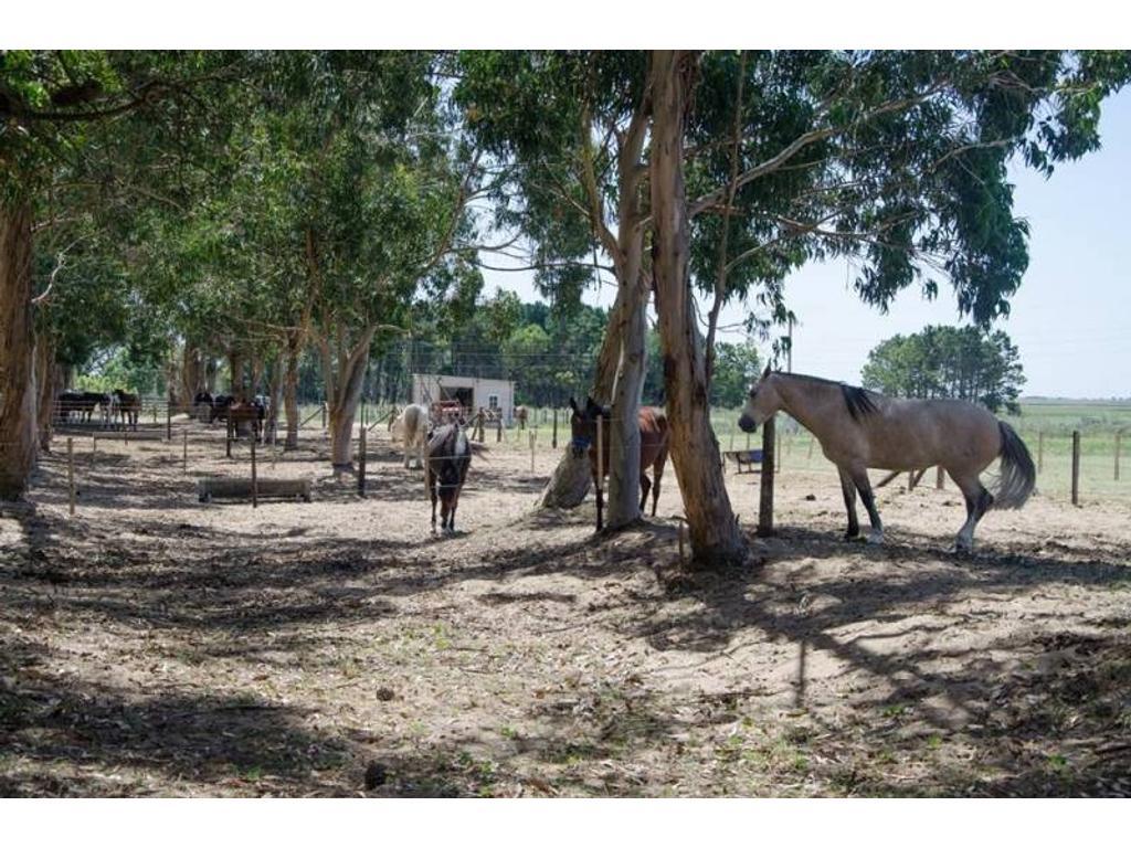 Venta de lote en Costa Esmeralda en la zona de Ecuestre