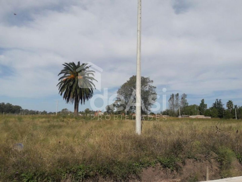 mda312  Terreno en venta en 7 - Villa Elvira - Buscainmueble