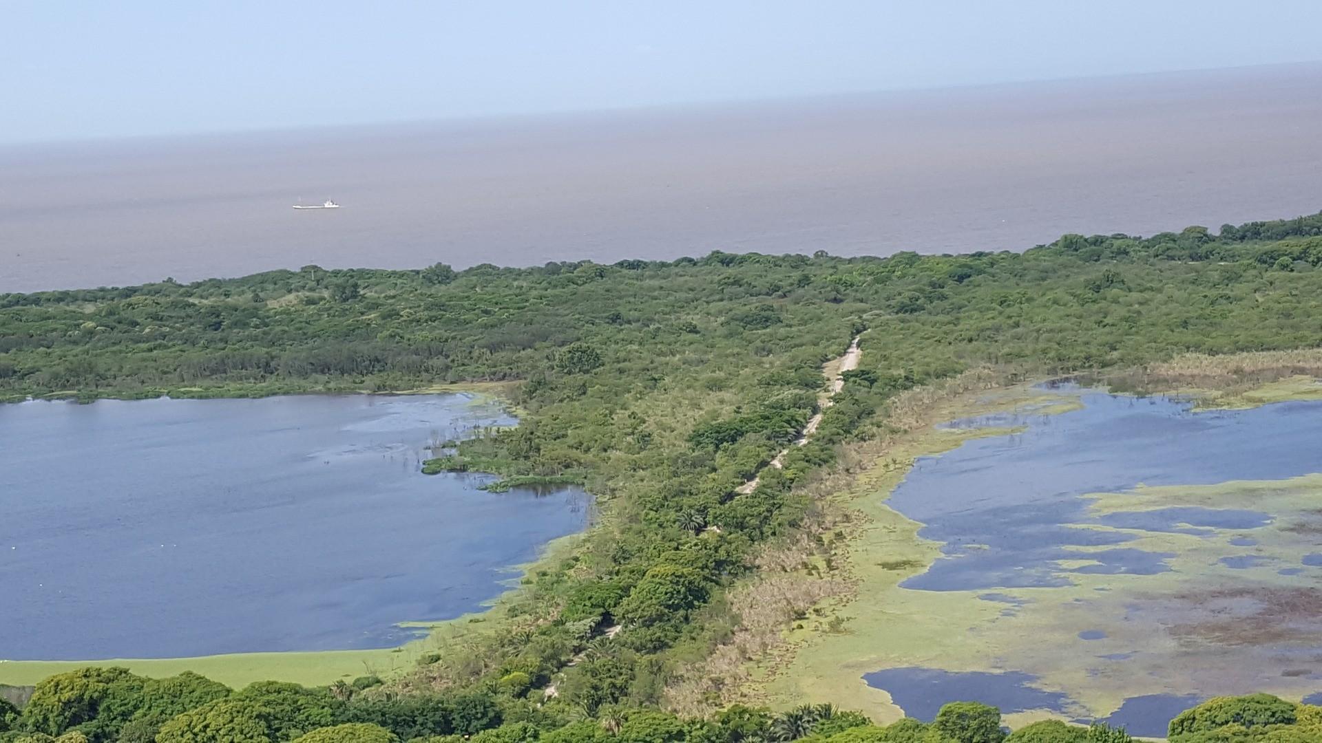 Azucena Villaflor al 400 - Puerto Madero