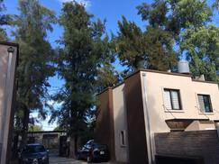 departamento 3 ambientes con patio en alquiler