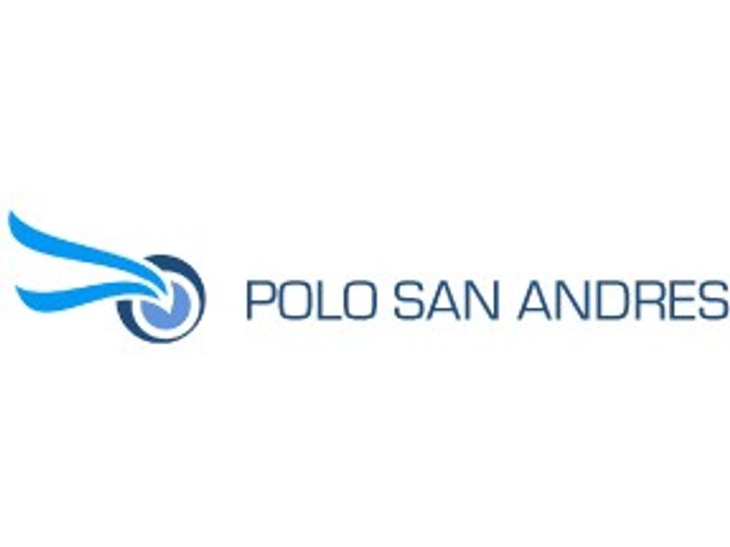 Polo San andres (textil)