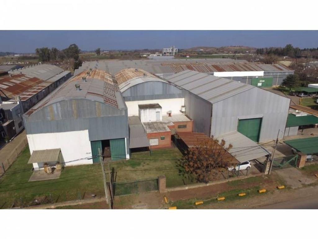 Planta Industrial - 15.000 m2 - 4 Naves + Oficinas